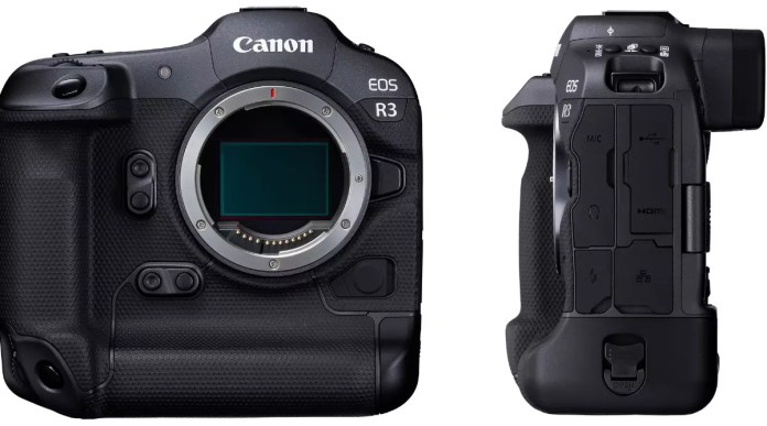 The Canon EOS R3 is able to focus right where you look