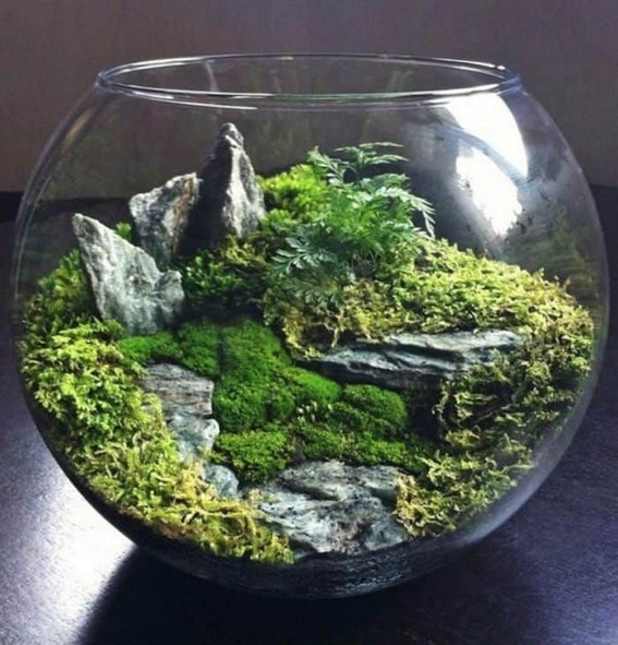 15 Best DIY Mini Terrarium Garden Projects And Ideas 28