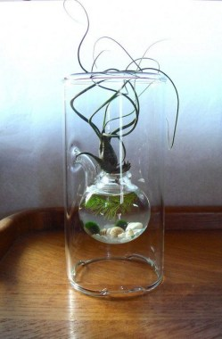 19 Brilliant And Creative DIY Nano Pond Garden Combination 20