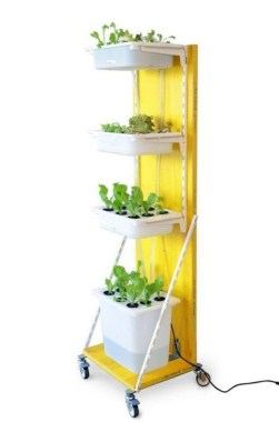 18 Finest Hydroponic Garden Ideas To Decorate Your House 21