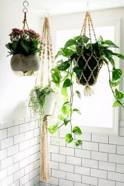 18 Highest Hanging Plants Ideas For Bathroom 08