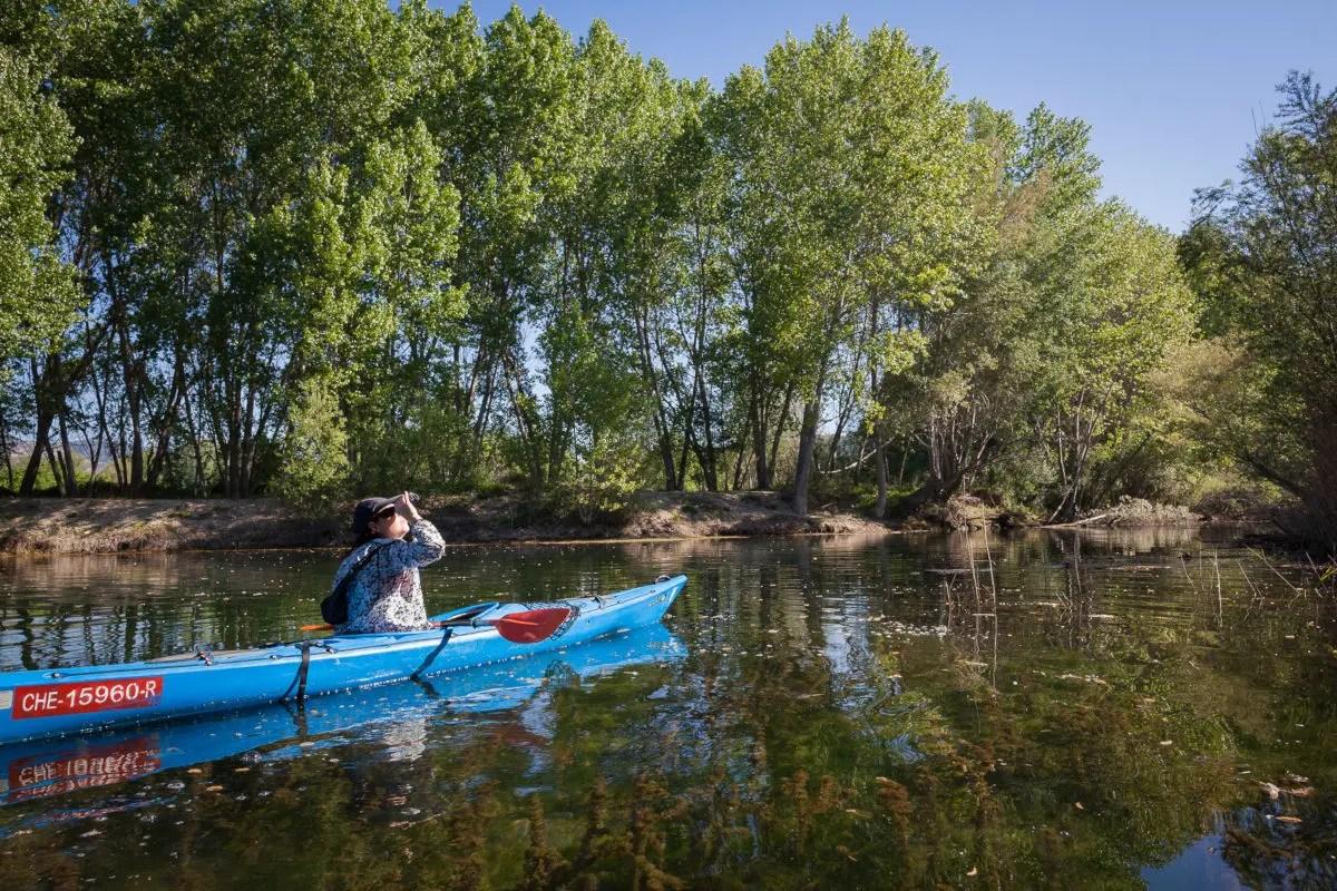 Kayak en Ribera d'Ebre prismaticos