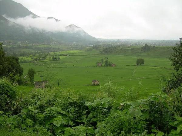 Arrozales en los alrededores de Khokana
