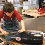 Cortando el atún en Tsukiji