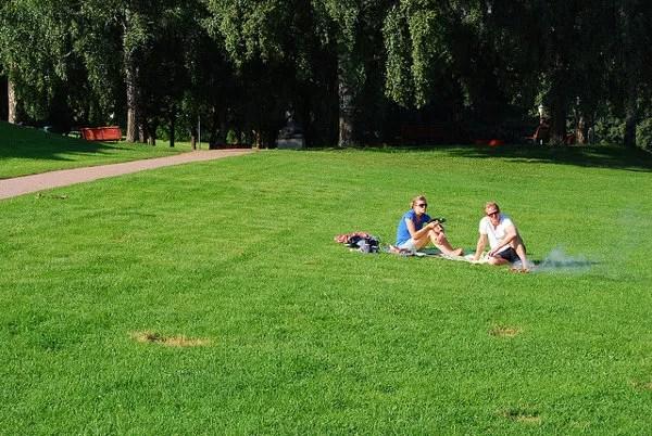 De picnic en el Vigelandsparken de Oslo