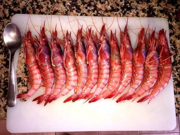 Foos de Alicante, gamba roja