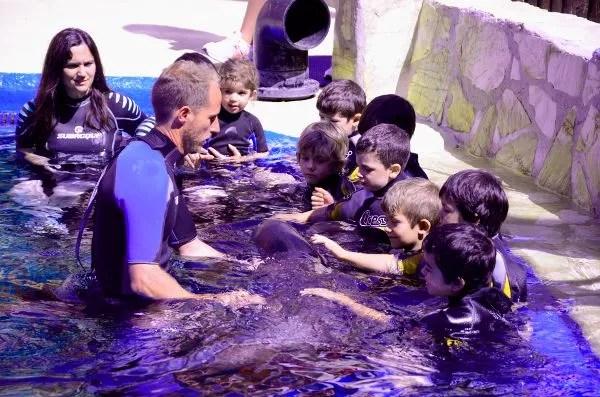 Fotos Mundomar, baño con leones marinos