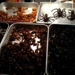 Fotos de Bangkok. Qué comer, insectos