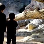 Fotos de Bioparc Valencia, Teo, Oriol y los cocodrilos