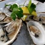 Fotos de Cork en Irlanda, ostras