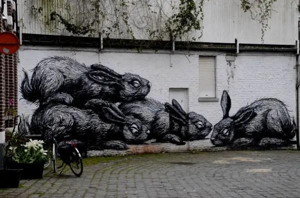 Fotos de Gante, ruta street art conejos Roa
