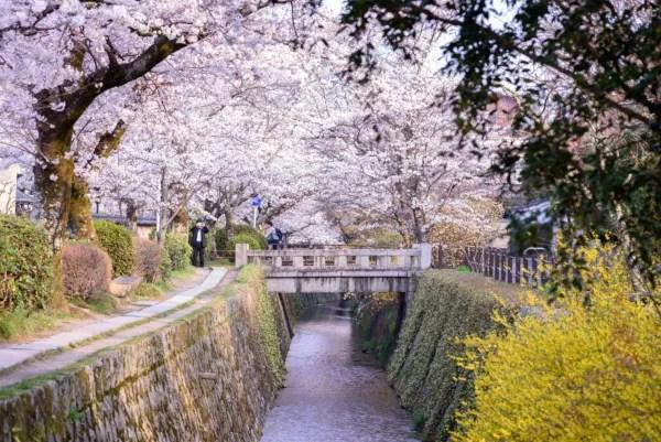 Fotos de Kioto en Japon, paseo del filosofo