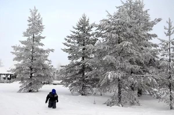 Fotos de Laponia Finlandesa, Teo en los bosques nevados