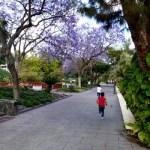 Fotos de Las Palmas de Gran Canaria, Teo y Oriol Parque Doramas