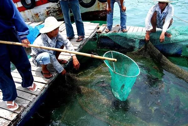 Fotos de Nha Trang en Vietnam, pescadores