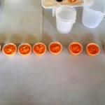Fotos de Romangordo en Caceres, jabones de la Casa de los Aromas