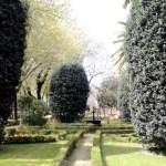 Fotos de Talavera de la Reina, jardines