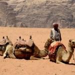 Fotos de Wadi Rum, Jordania - beduino y camellos
