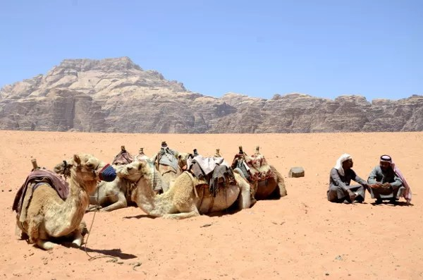 Fotos de Wadi Rum, Jordania - camellos y beduinos descansando
