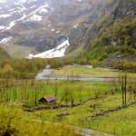 Fotos de los Fiordos Noruegos, paisajes y casitas tren de Flam