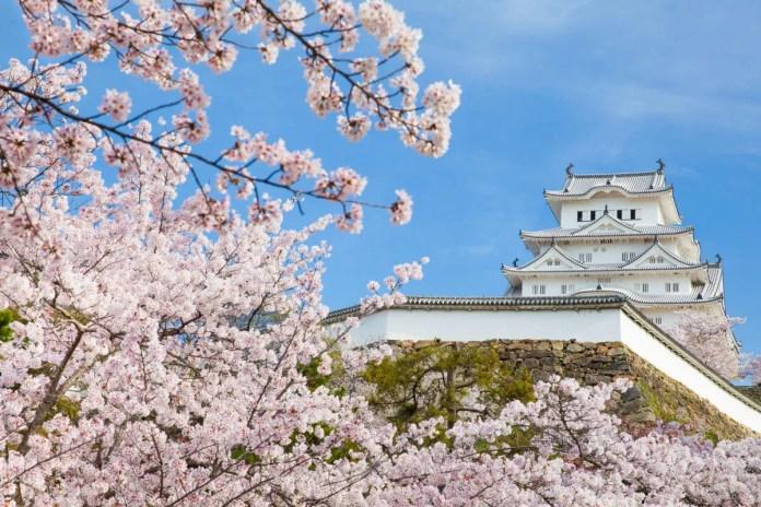 Fotos del Castillo de Himeji en Japón con cerezos en flor