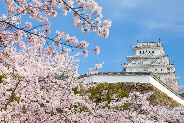 Fotos del Castillo de Himeji en Japón con los cerezos en flor