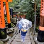 Fotos del Fushimi Inari de Kioto, Teo y el paraguas