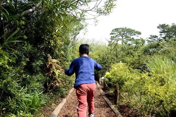 Fotos del Museo Ghibli de Mitaka, Teo corriendo