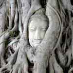 Fotos del viaje a Tailandia con niños, Ayuttahya