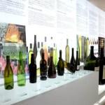 Fotos del Museo del Vino de Penafiel en Valladolid, botellas