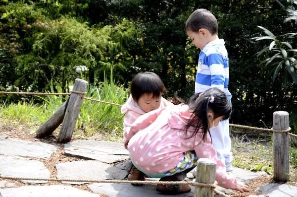 Fotos de Japon, Oriol en el Museo Ghibli