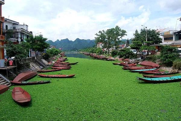 Río Day en Vietnam, a la Pagoda del Perfume