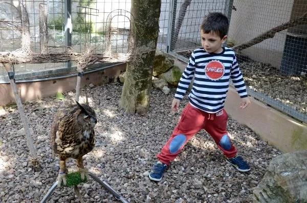 Teo en el Birdpark Malta