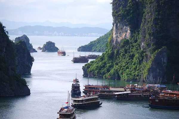 Veleros de juncos atracados sobre la Bahía de Ha Long