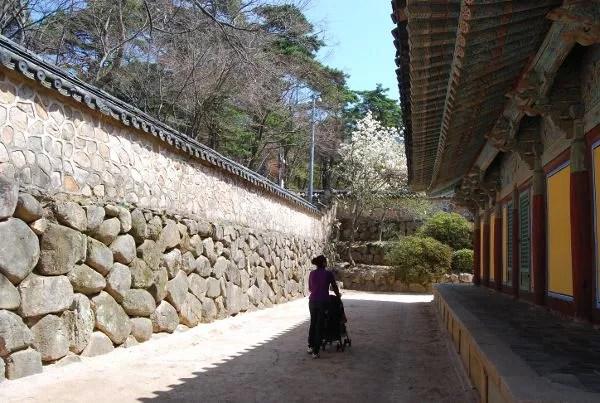 Vero y Teo paseando por el templo Bulguksa de Gyeongju