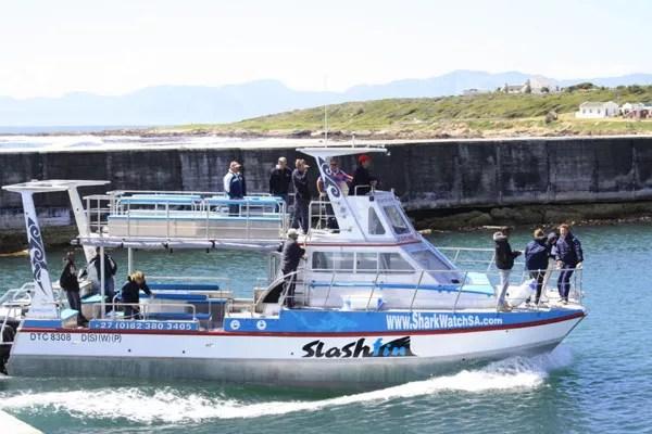 Fotos de bucear con tiburon blanco en Sudafrica, barco