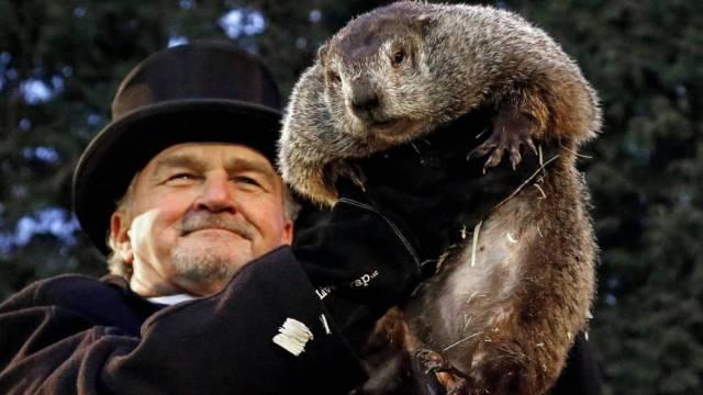 Día de la Marmota: Así comenzó Phil a 'predecir' el tiempo | Ciencia | EL  PAÍS