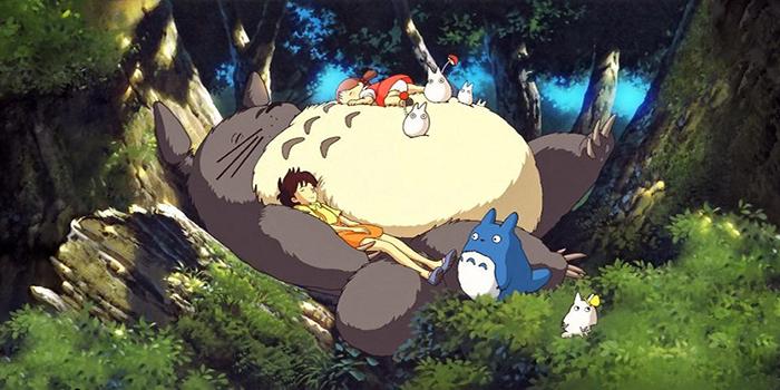 Totoro Mundo Invisible El Palomitrón