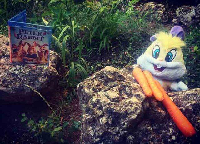 Peter Rabbit- Conejo- El Palomitron