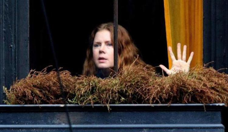 la mujer en la ventana - el palomitron
