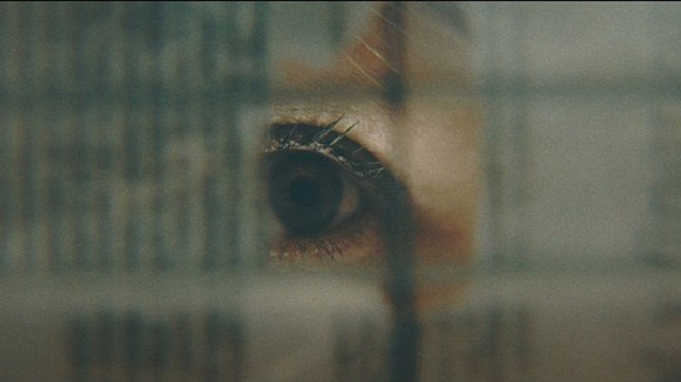 Colza, lo invisible documental