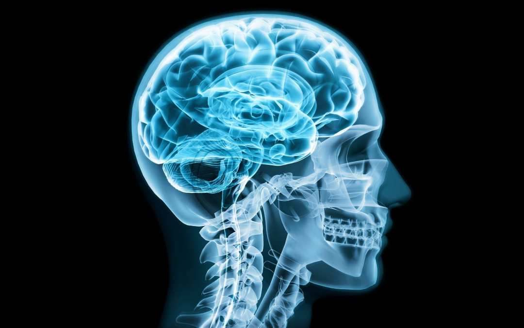 Head Trauma And Other Intra-Cranial Pathology Imaging Approaches