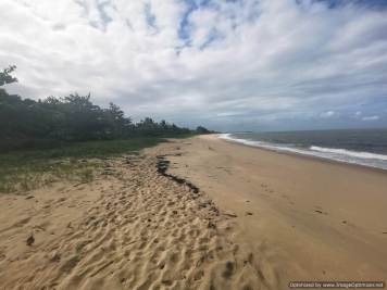 playa de las tortugas