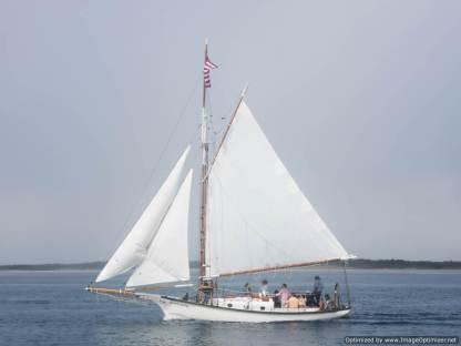 barco actual