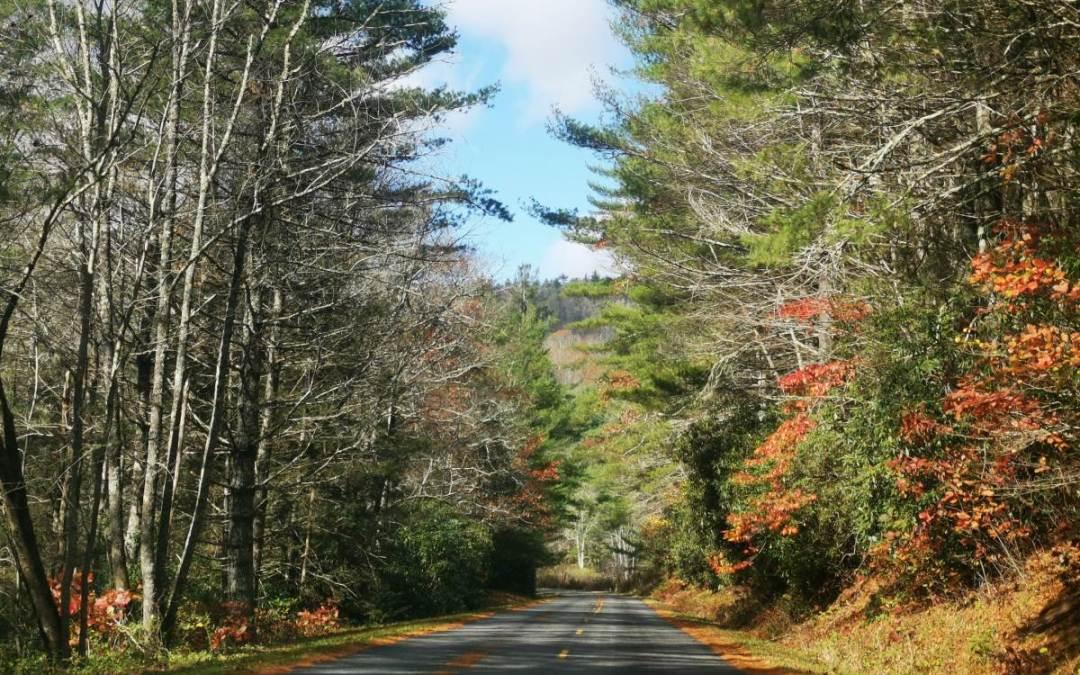 85 Apalaches. Colores de otoño