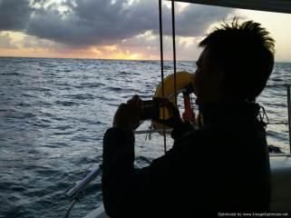 Buscando las ballenas