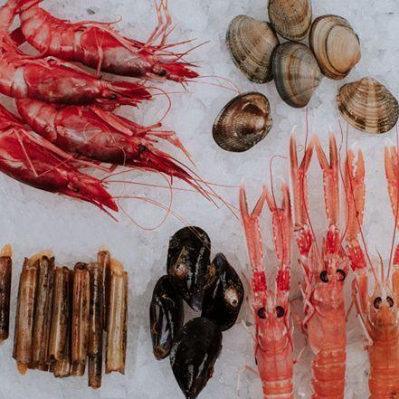 el pescador home tienda online pack mariscada el pescador