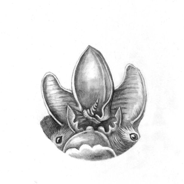 bats4 smol