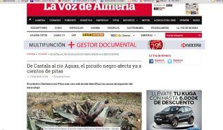elpicudonegro.com en la Voz de Almería