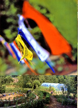 a simpler life el pocito gardens illustrated november 2000 05